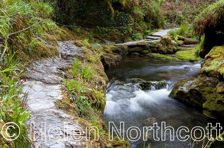 Dartmoor Lydford Gorge