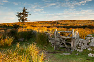 Dartmoor Photographer - Things to Photograph in Autumn - Sunrise