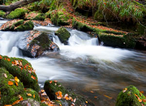 Dartmoor Photographer - Things to Photograph in Autumn - Flowing Water