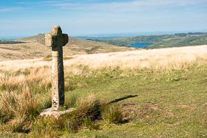 Dartmoor Photographer - Foreground Interest