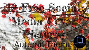 Autumn Social Media Header Photos - Dartmoor Photographer