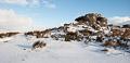 Dartmoor Photographer - Winter Photos