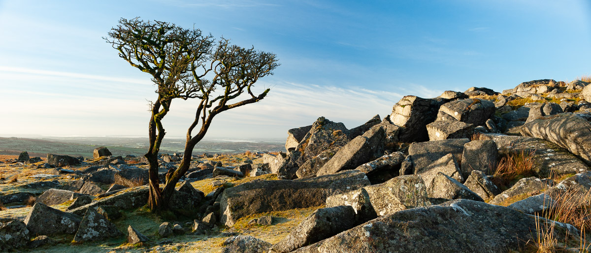 Dartmoor Photographer View of Kings Tor